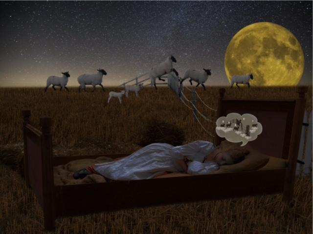 Schlaflosigkeit - Schlafstörungen | Timeout Coaching