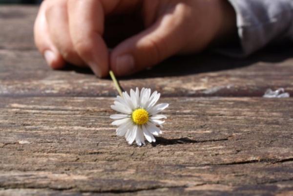 Auf der Suche nach Glück und Zufriedenheit | Timeout Coaching